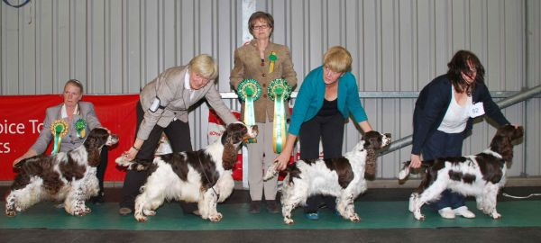 Best In Show Line up 2012